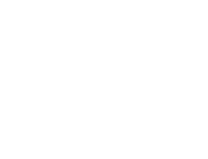 American Oncology Network, LLC
